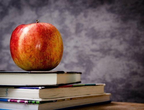 OECD – Bildungsbericht 2017